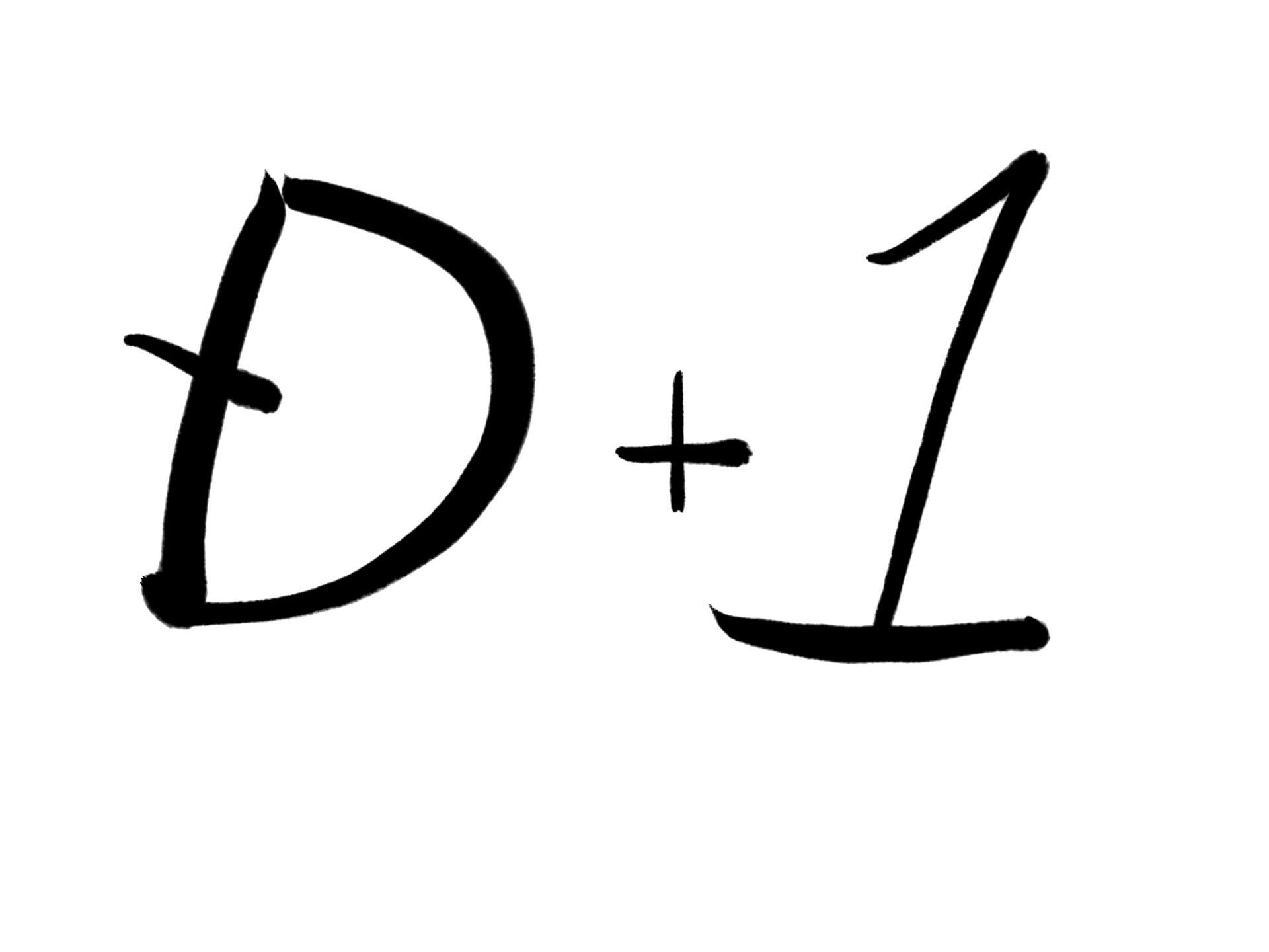 d+1 意味